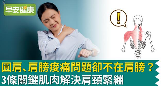 圓肩、肩膀痠痛問題卻不在肩膀?3條關鍵肌肉解決肩頸緊繃