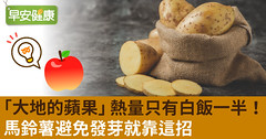 「大地的蘋果」熱量只有白飯一半!馬鈴薯避免發芽就靠這招