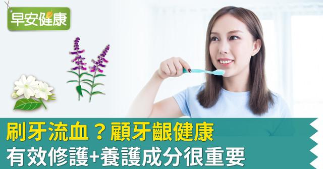 刷牙流血?顧牙齦健康 有效修護+養護成分很重要