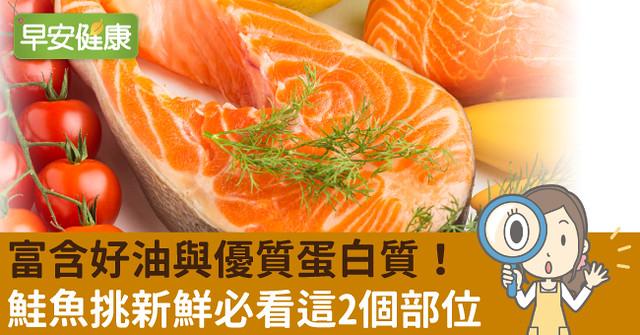 富含好油與優質蛋白質!鮭魚挑新鮮必看這2個部位