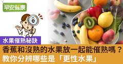 香蕉和沒熟的水果放一起能催熟嗎?教你分辨哪些是「更性水果」
