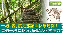 一場「森」度之旅讓山林療癒你!每週一次森林浴,紓壓活化抗癌力
