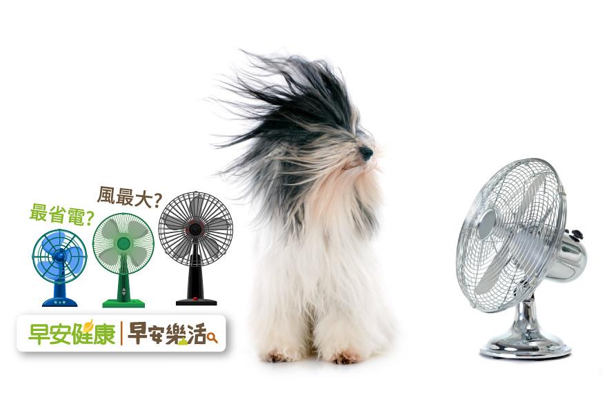 電風扇怎麼挑?台電教你內行挑選3訣竅:這款最省電、風力強要看扇葉