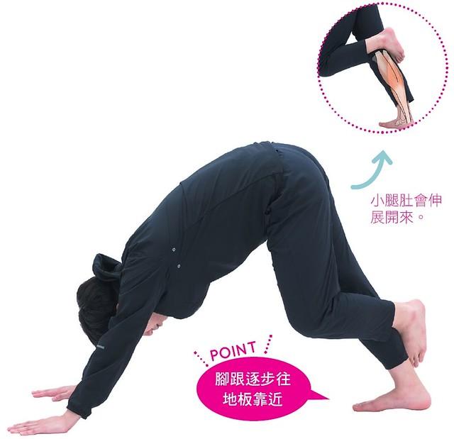 腳跟逐步往地板靠近。小腿肚會伸展開來。(
